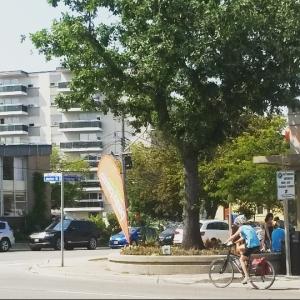 2015-09-05 cyclist