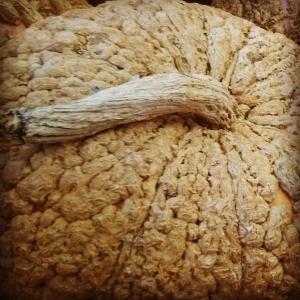 2015-10-29 pumpkin 2