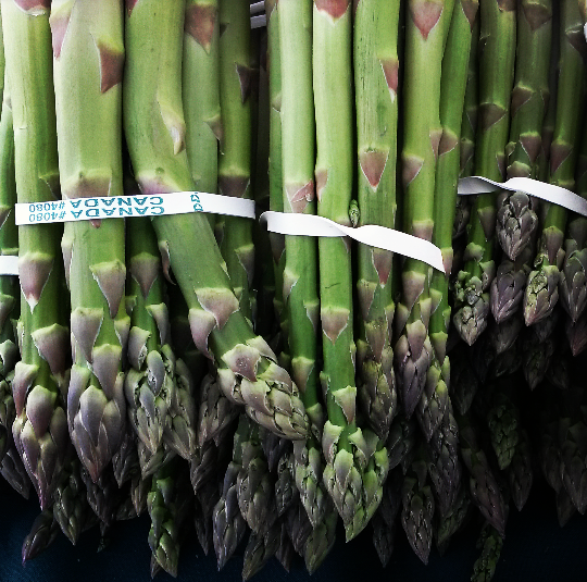 Ontario-grown asparagus was in stock at the Port Credit Farmers' Market on June 4, 2016. (Photo: Kelly Roche/QEW South Post)