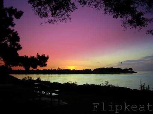 FLIPKEAT Heaven Is Here On Earth